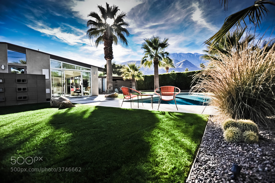 Palm Springs House - Mid Century Modern