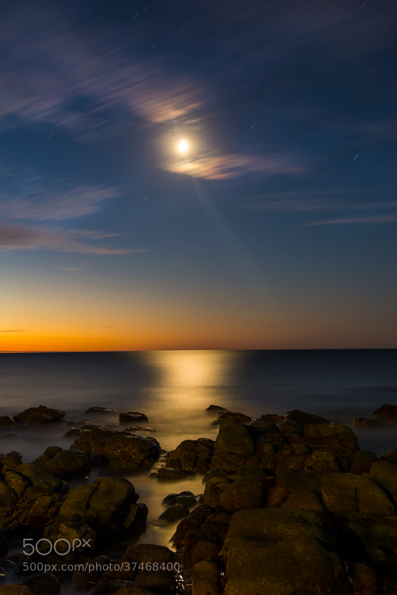 Photograph Romancing the Moon by Bipphy Kath on 500px