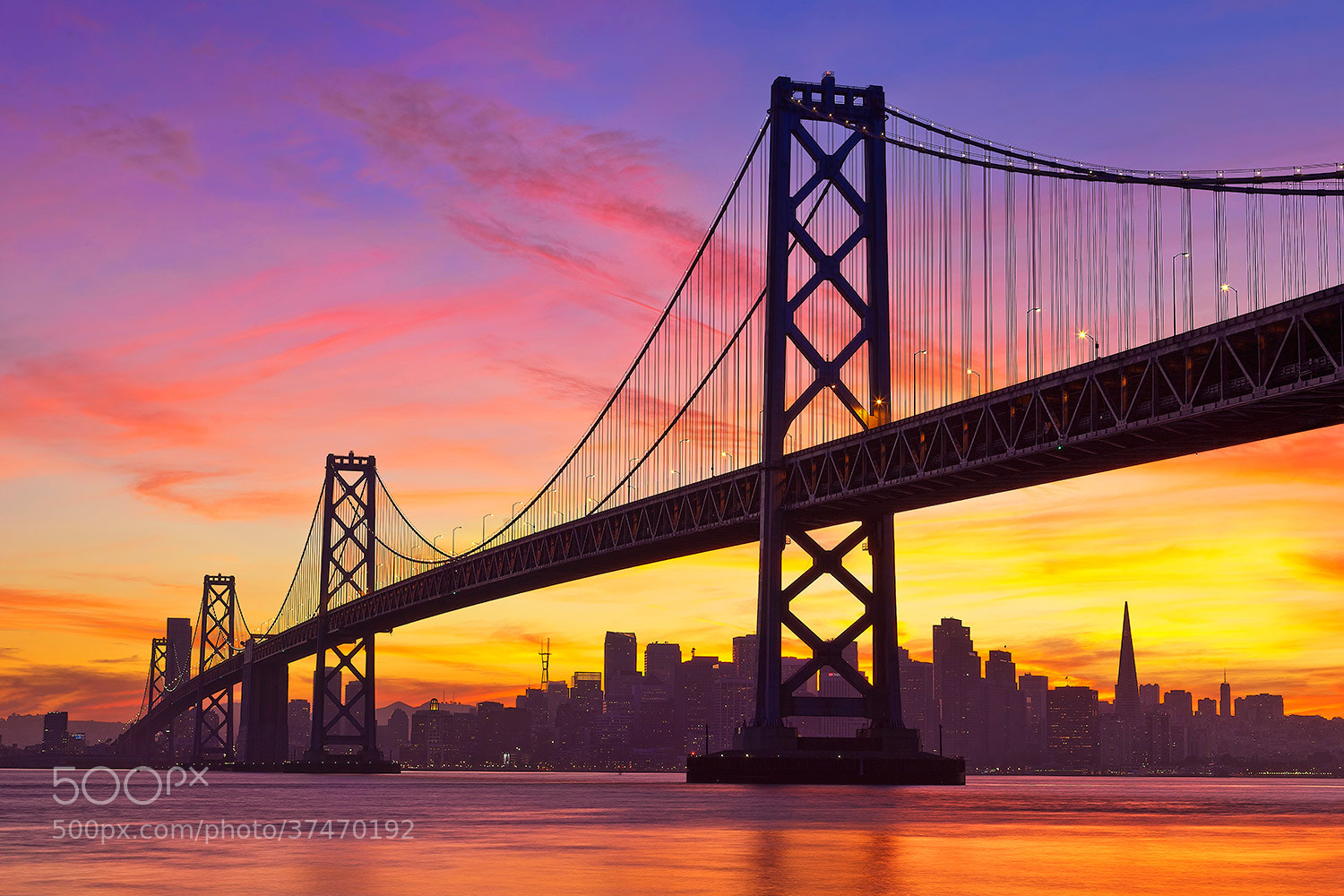 Photograph Sunset on the Bay by Paul Reiffer on 500px