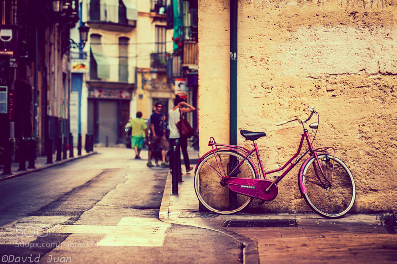Photograph Pink bike by David Juan on 500px