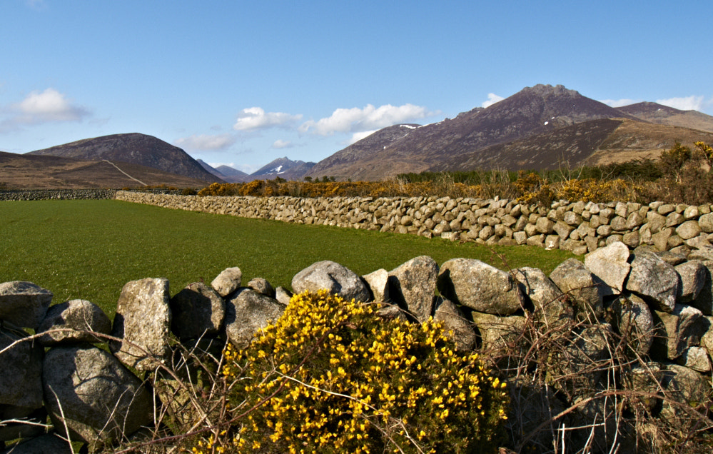 Photograph Stone walls of the Mournes by Desmond Daly on 500px