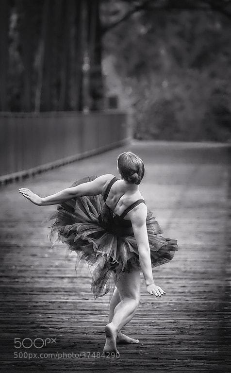 Photograph Bridge by Mike Reid on 500px