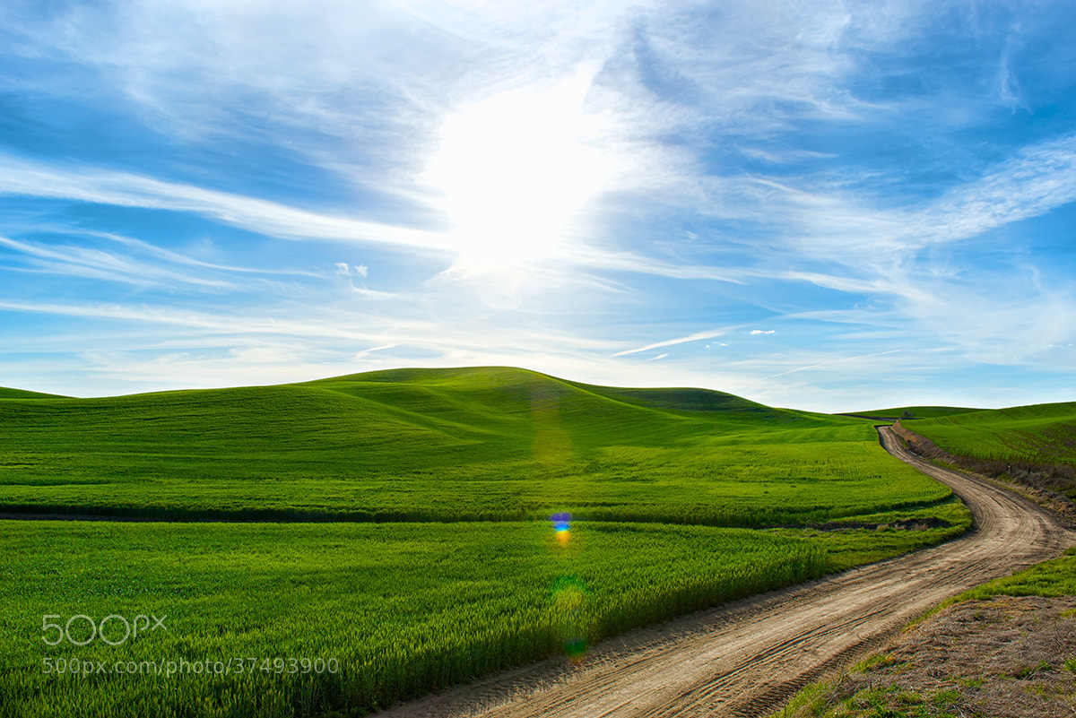 Photograph Late Afternoon on the Palouse by David Kosmos Smith on 500px