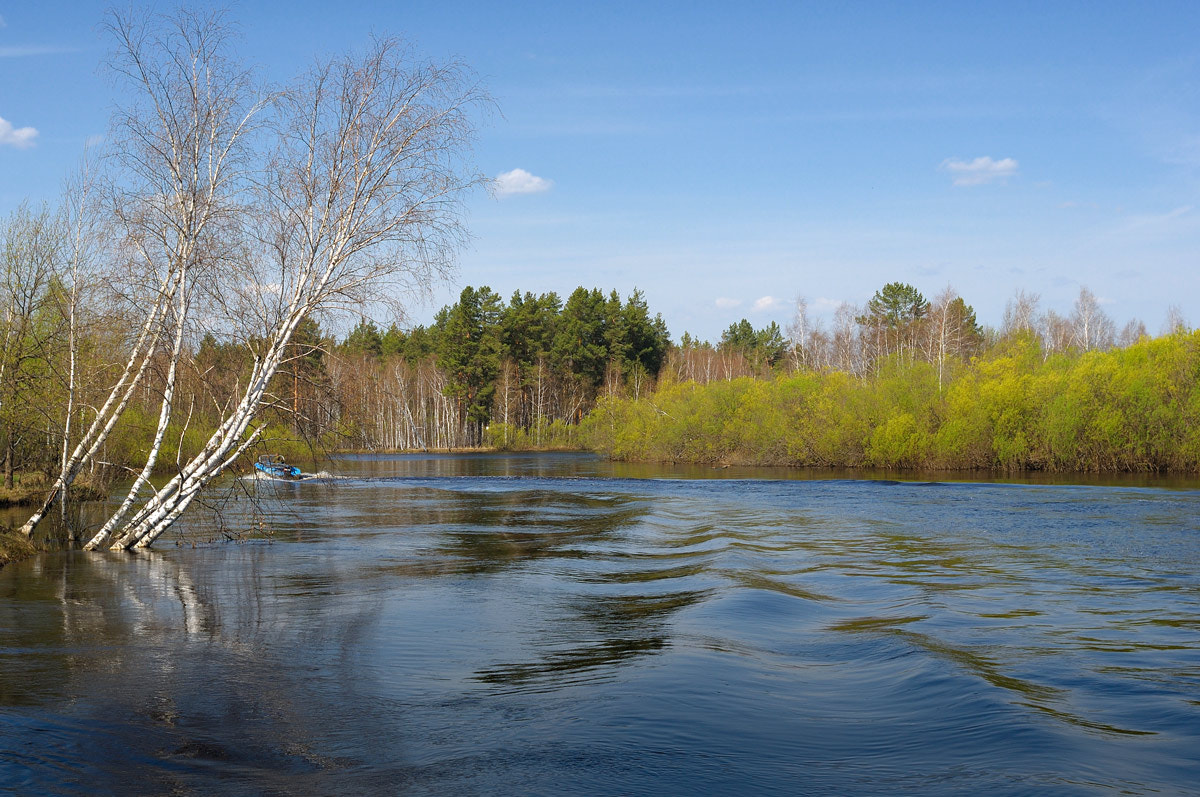 Photograph The river Pra in the spring by Sergey Lopukhov on 500px