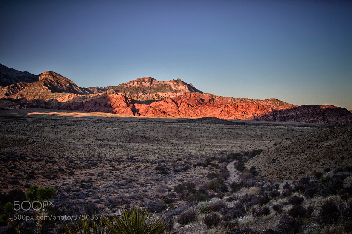 Photograph Red Rock Canyon by Sean Lyons on 500px