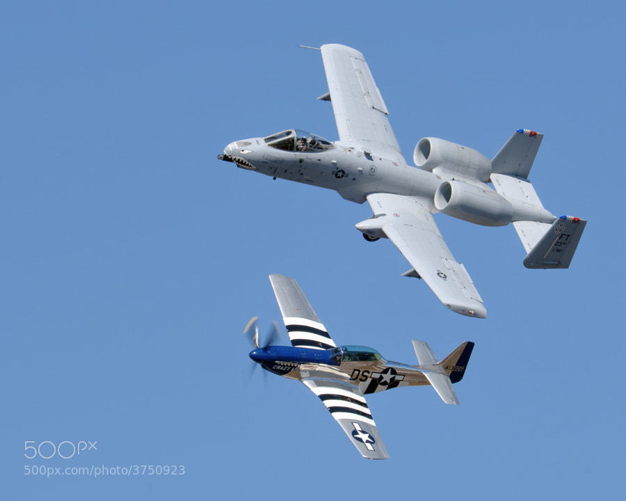 "USAF Heritage Flight over NAS Pensacola. Nov 2011. Maj Dylan ""HABU"" Thorpe in the A-10 Warthog and Lee Lauderback in the Mustang ""Crazy Horse 2"""
