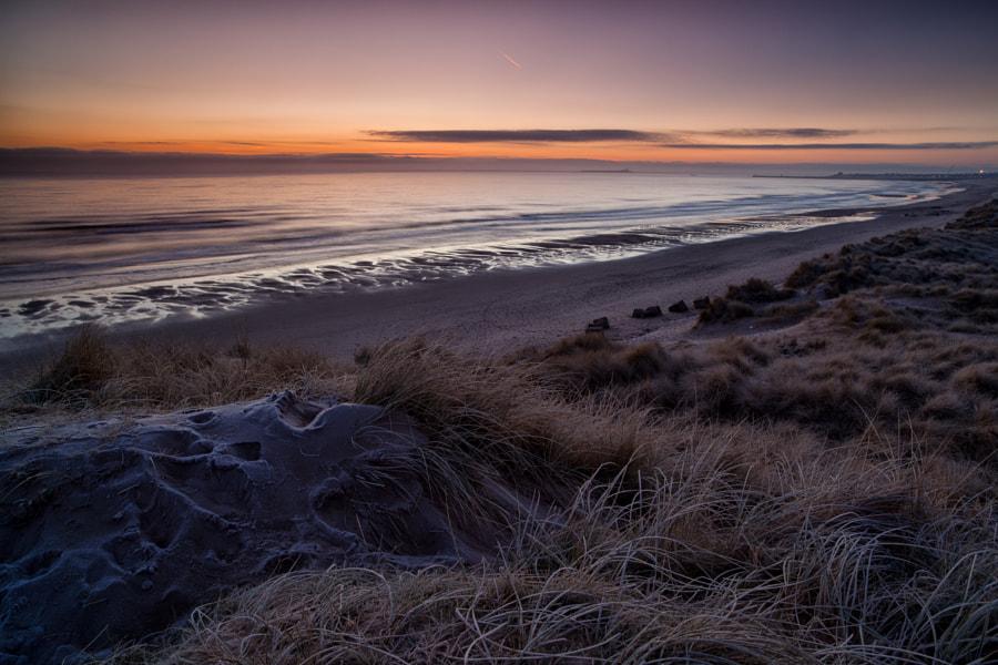 Pre-Dawn, Northumberland Coast