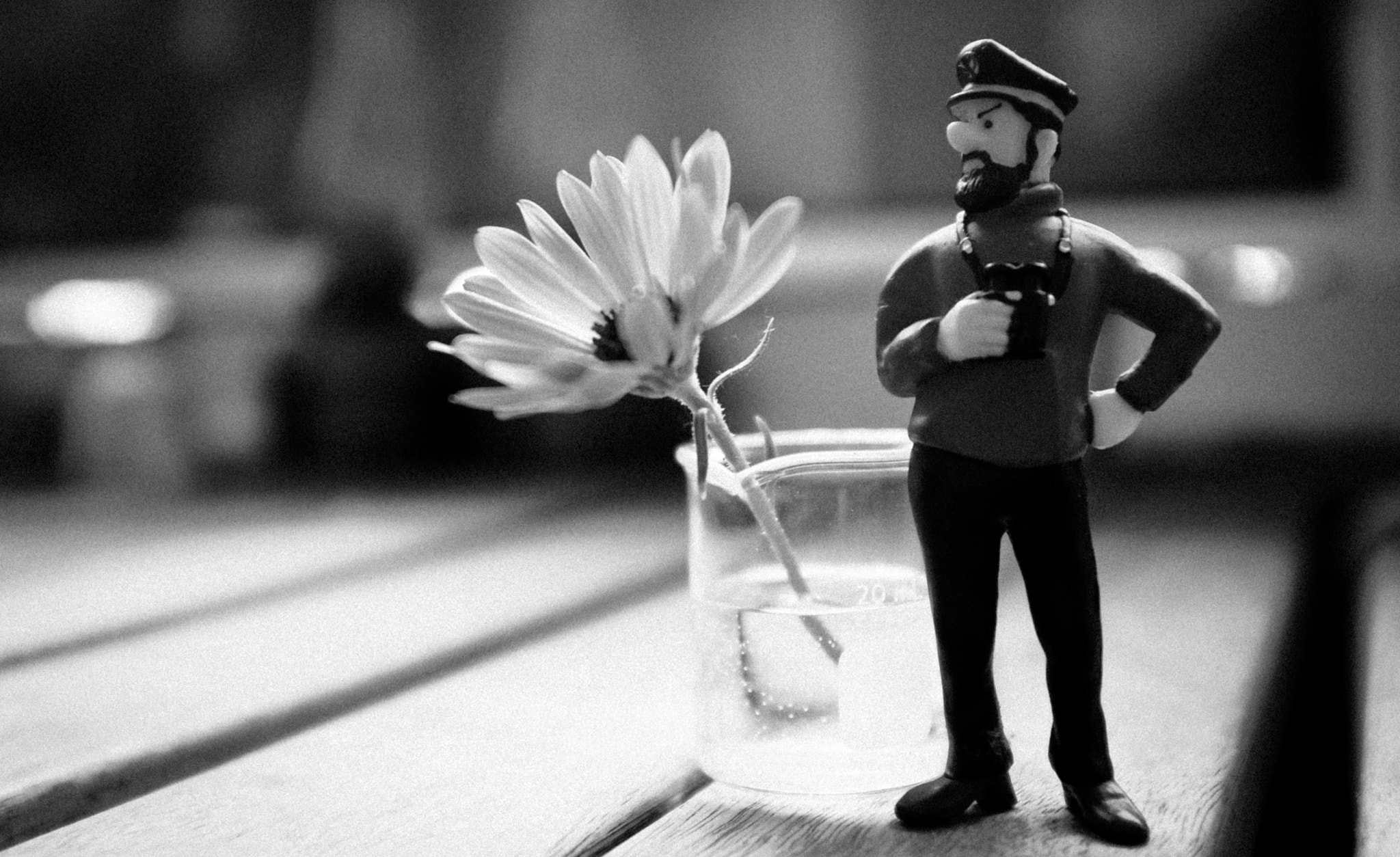 Photograph The Captain and the Flower by Mark Prince on 500px
