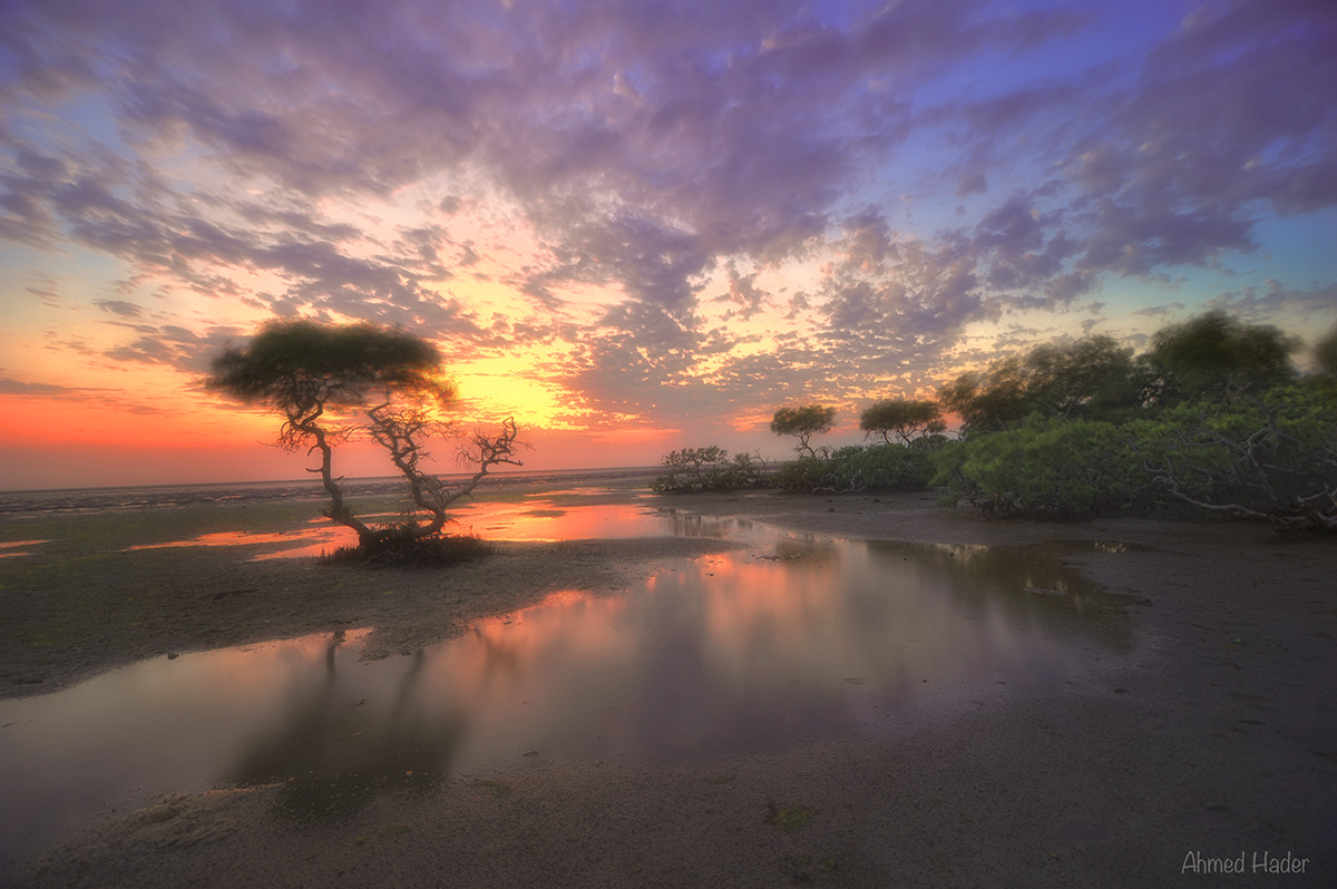 Photograph On the beach by Ahmed Hader on 500px