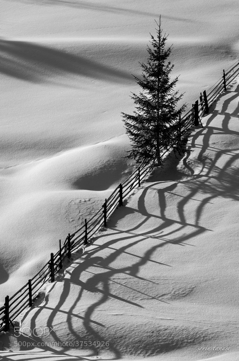 Photograph shadows by sorin tanase on 500px