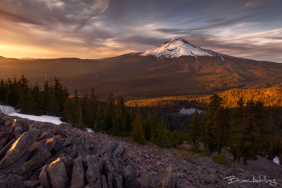 Photograph Golden Light. by Brian Adelberg on 500px