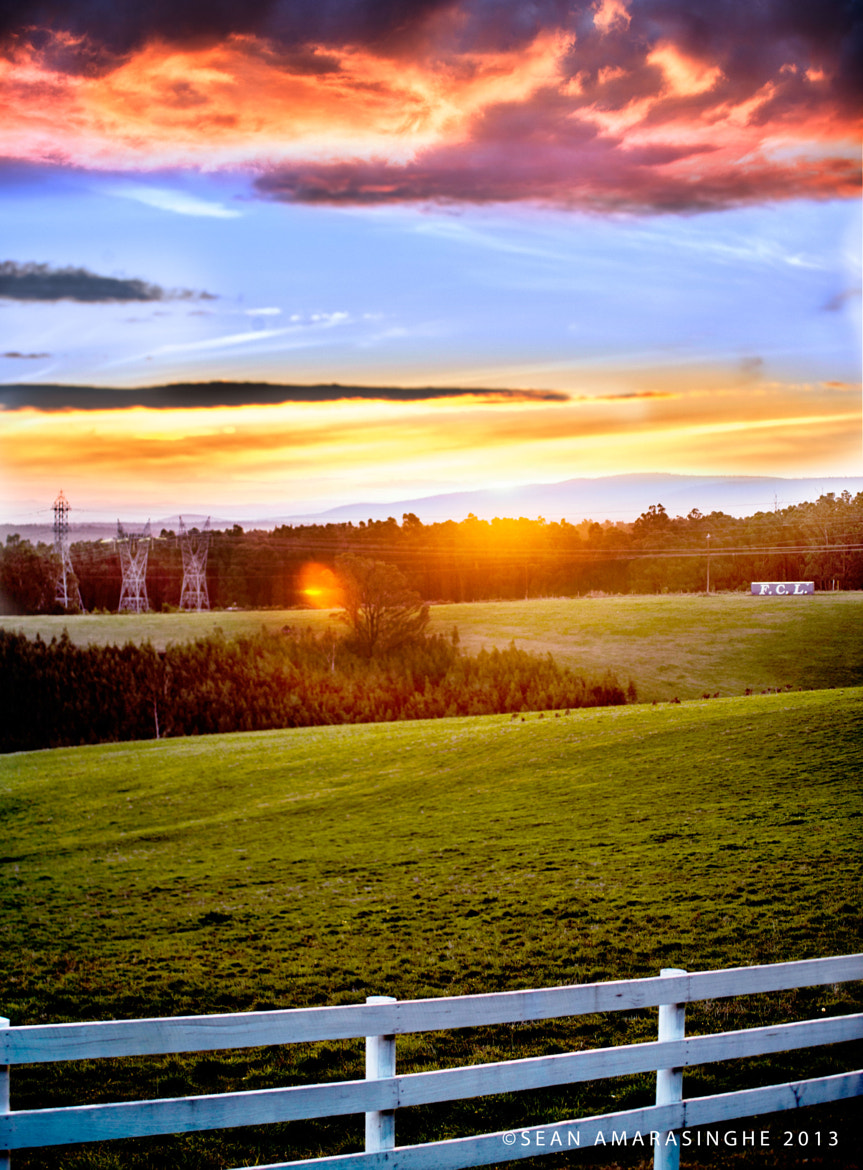 Photograph Evening in Kinglake by Sean Amarasinghe on 500px