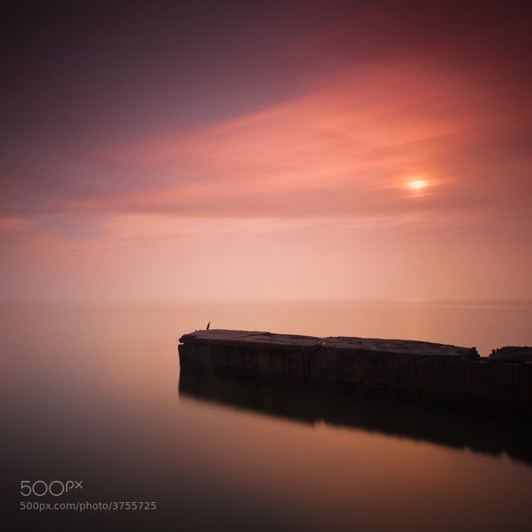 Photograph Sea walk by Павел Хлыпенко on 500px