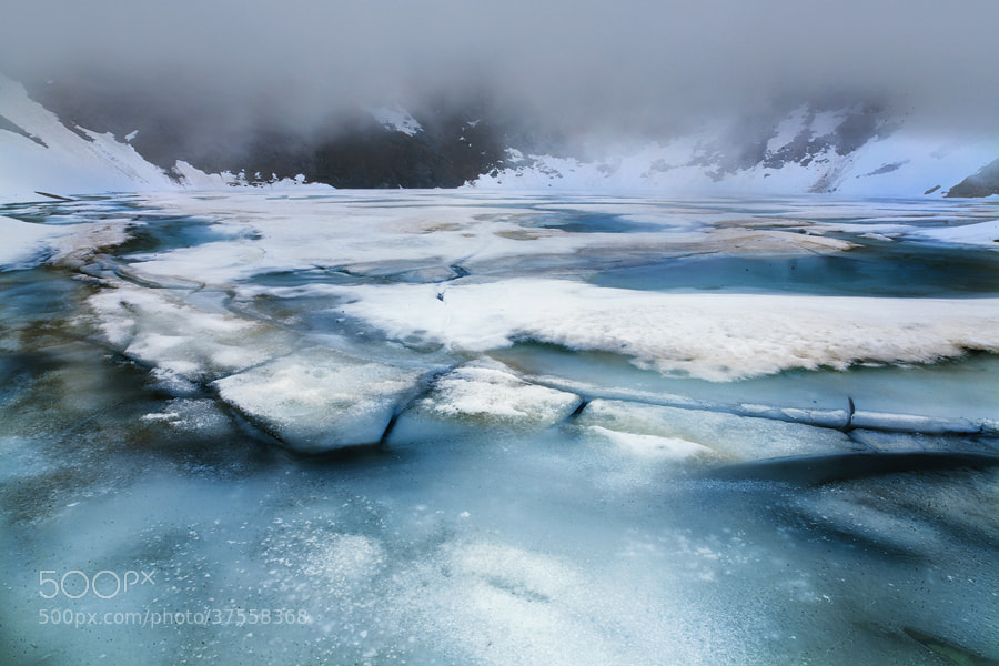 Photograph Lost on a frozen planet by FeFoPhotography  on 500px