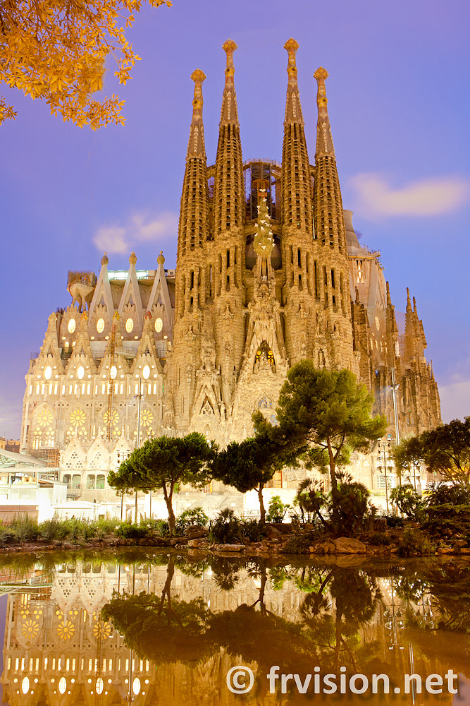 Photograph Sagrada Familia, Barcelona, Spain by Javier Fores on 500px