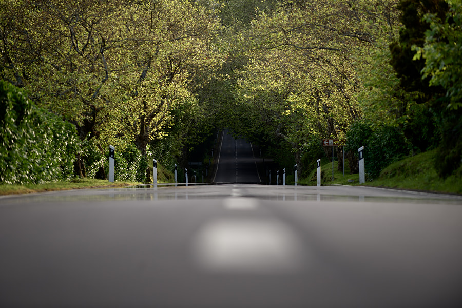 Road by Rui Caria on 500px.com
