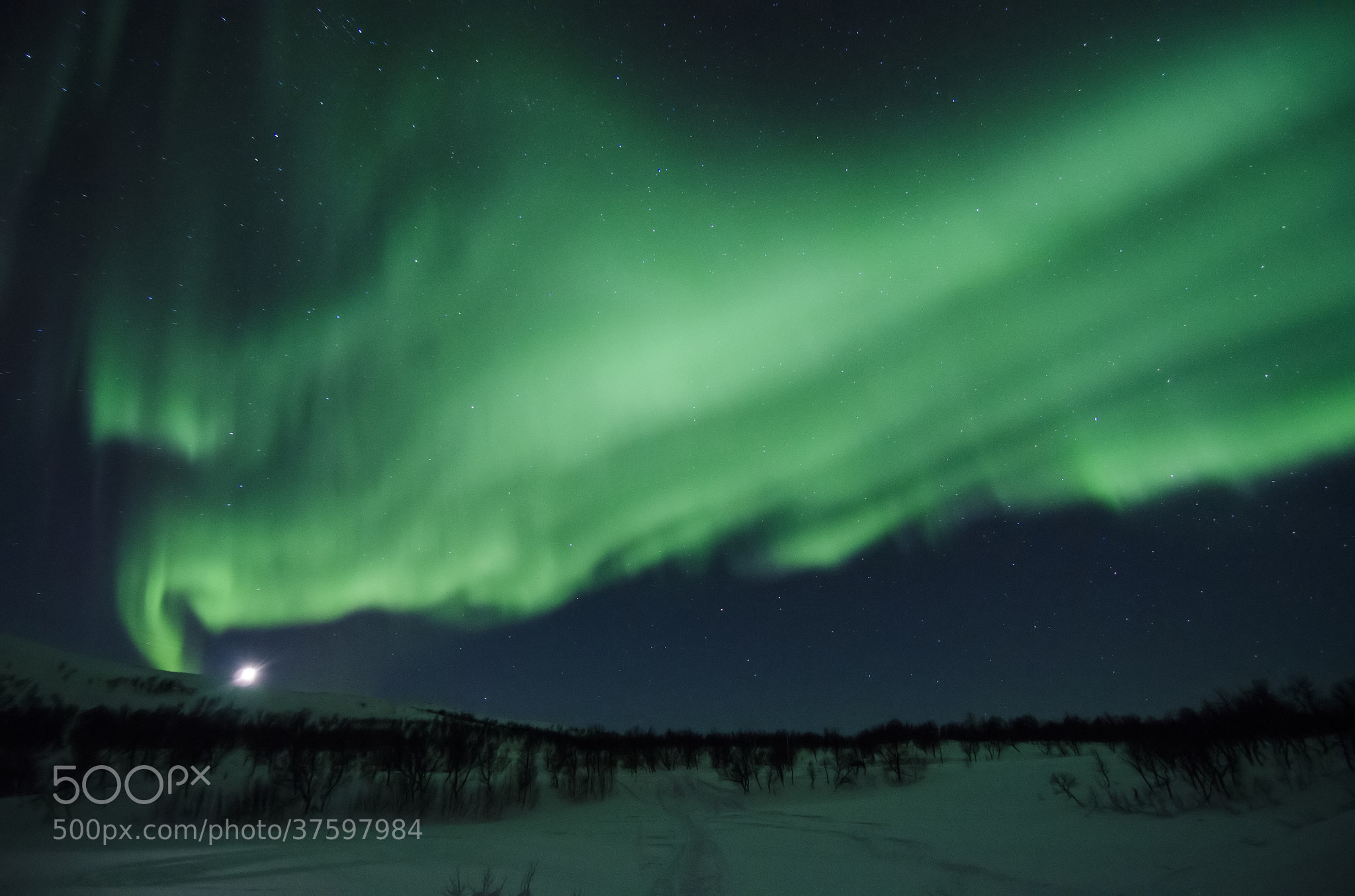 Photograph Fireworks in the sky 3 by Espen Hanssen on 500px