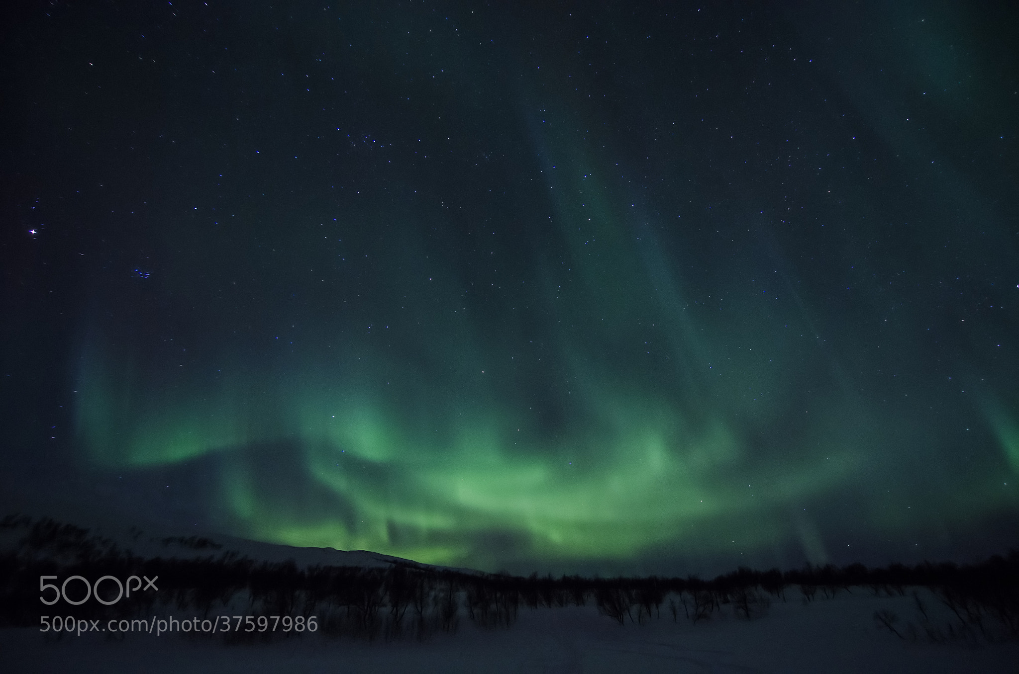 Photograph Fireworks in the sky 7 by Espen Hanssen on 500px