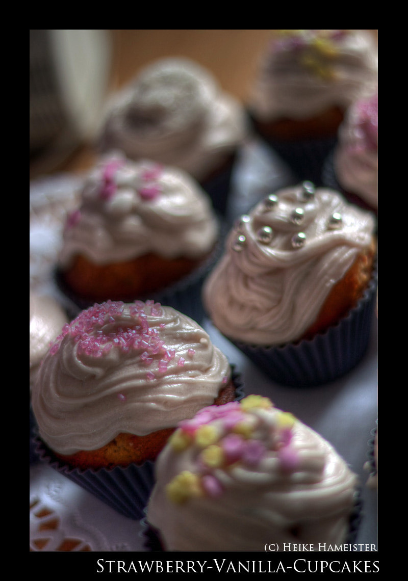 Photograph Cupcakes by Heike Hameister on 500px