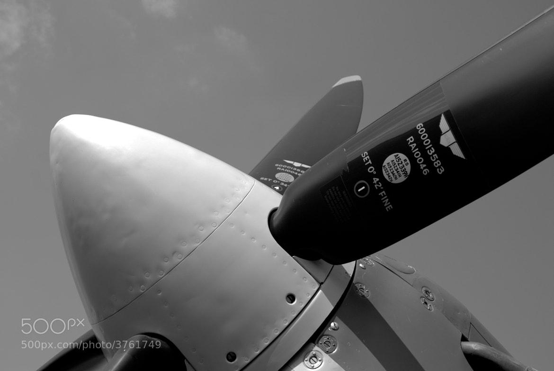 Photograph Spitfire by Marc Melander on 500px