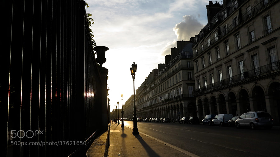 PARIS / TUILERIES