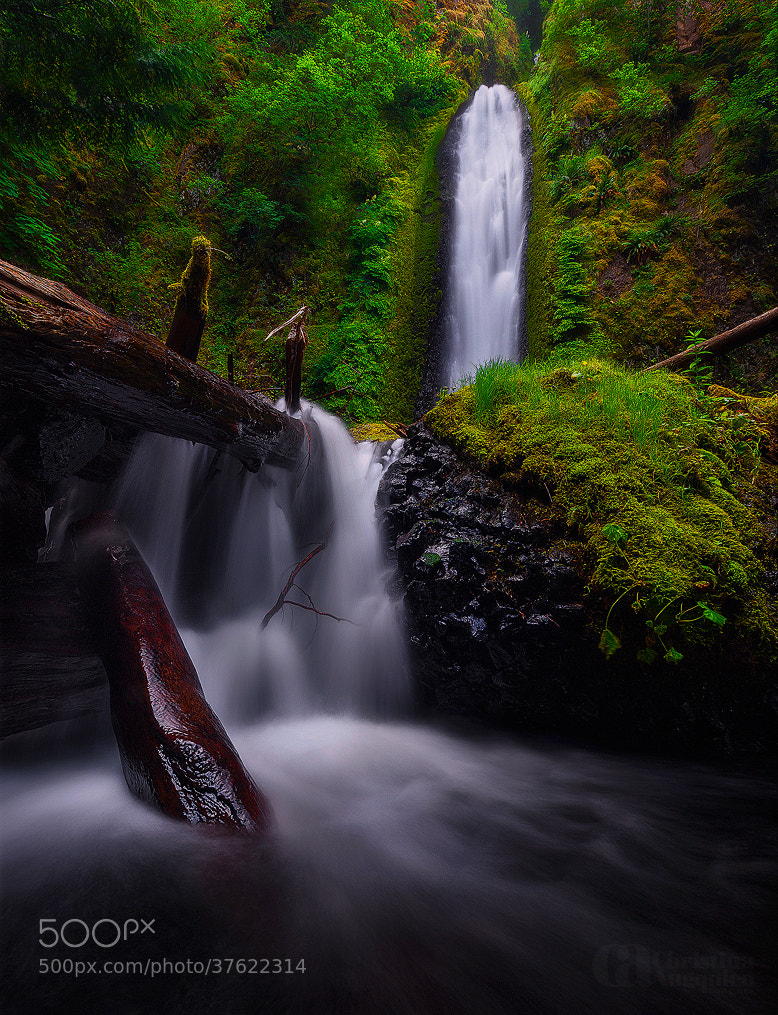 Photograph Gorton Creek Falls by Christina Angquico on 500px