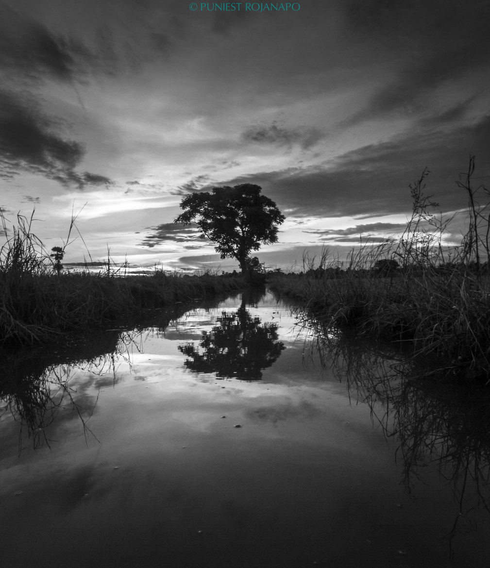 Photograph Reflection by Puniest Rojanapo on 500px
