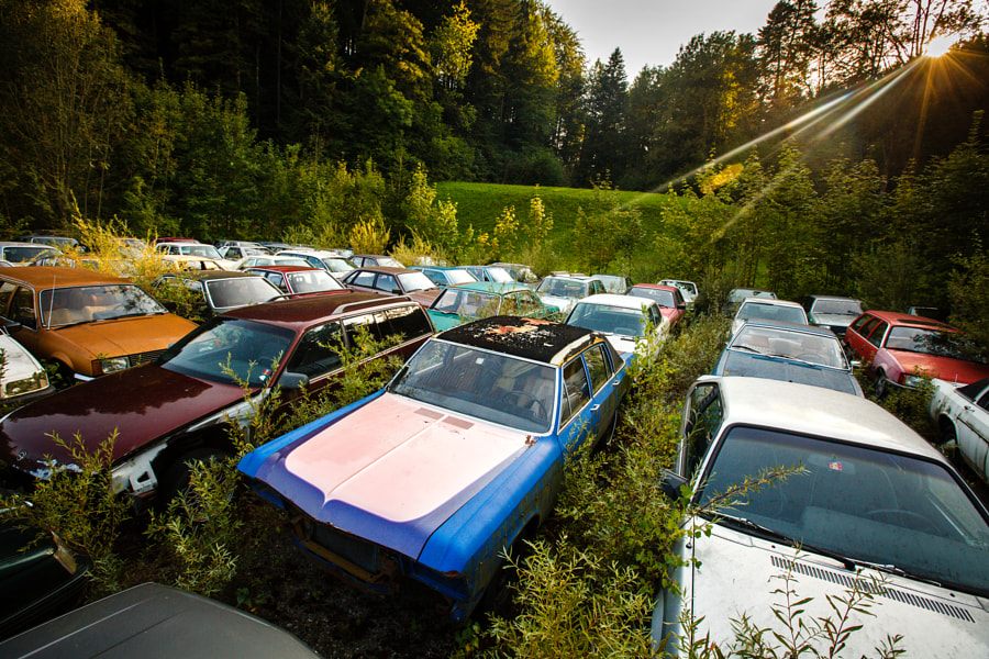 The Car Cemetery