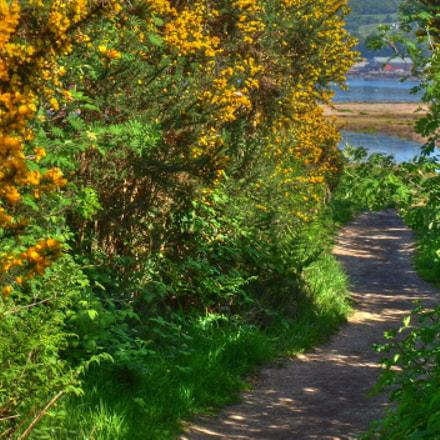 Walk Through Isle of Arran
