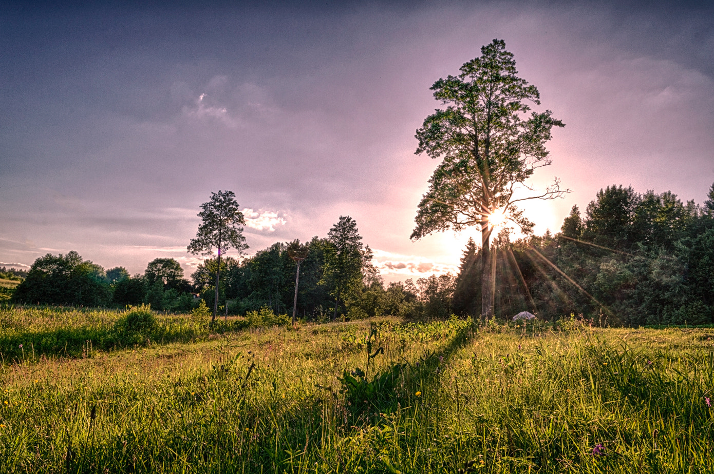 Photograph Magic sunset in countryside by Norbert Durko on 500px