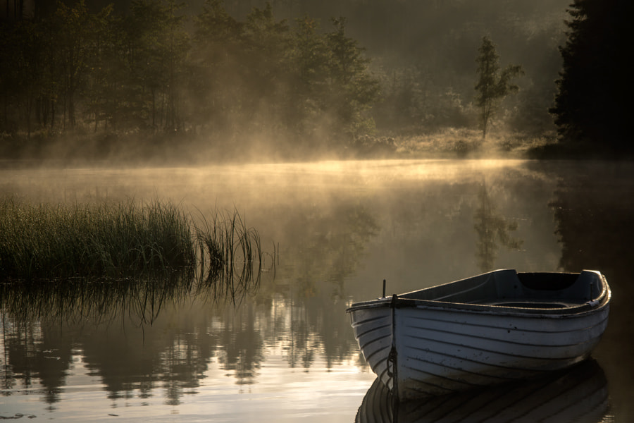 Photograph Warming light... Loch Rusky... by David Mould on 500px