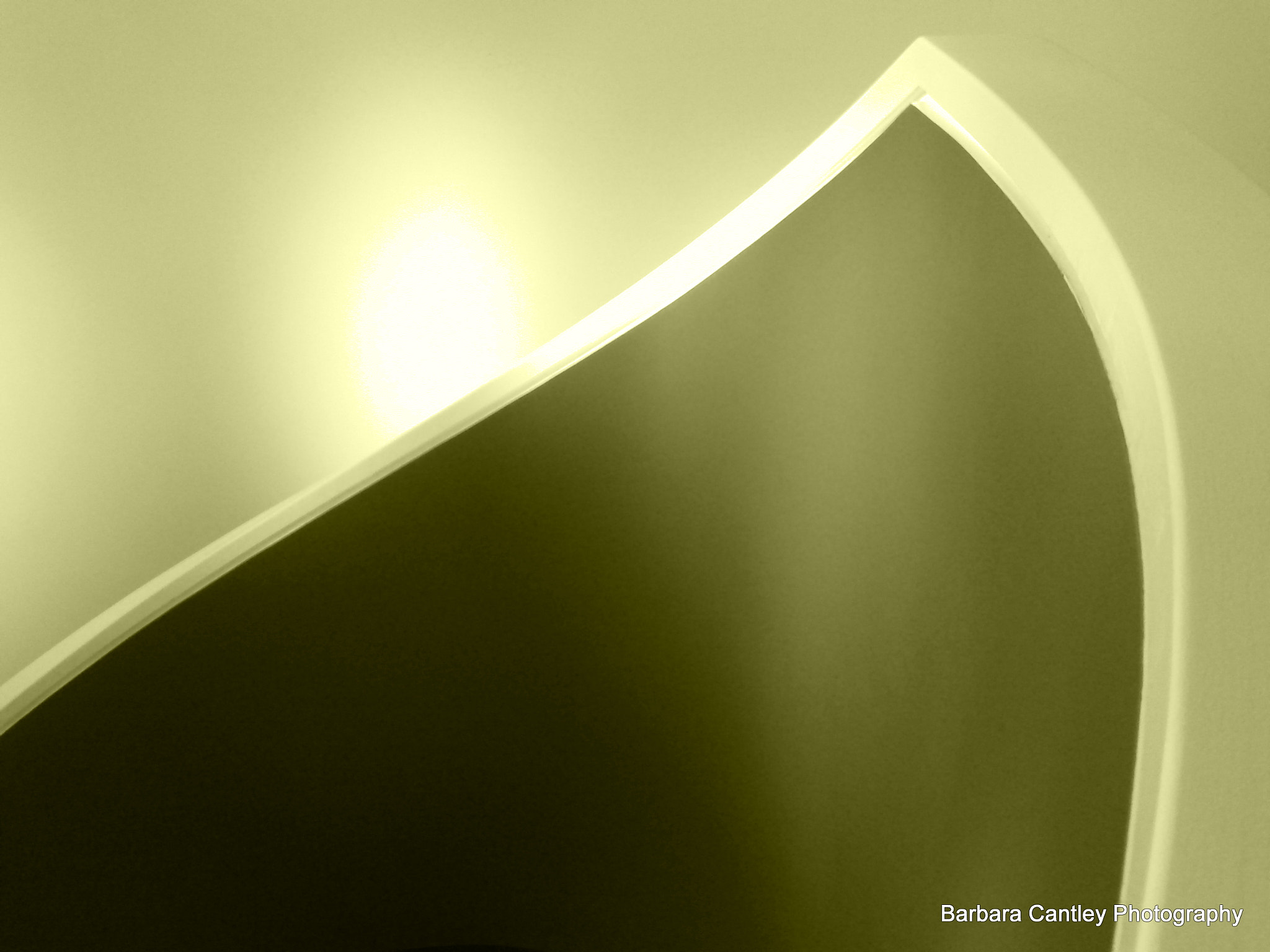 Photograph Curves by Barbara Cantley on 500px