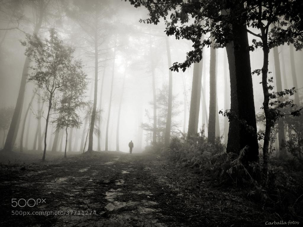 Photograph The path of the giants by Guillermo  Carballa on 500px