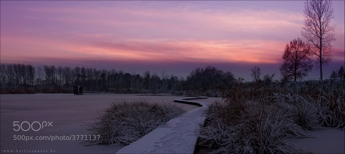 Photograph Winter sunset by Bart Ceuppens on 500px