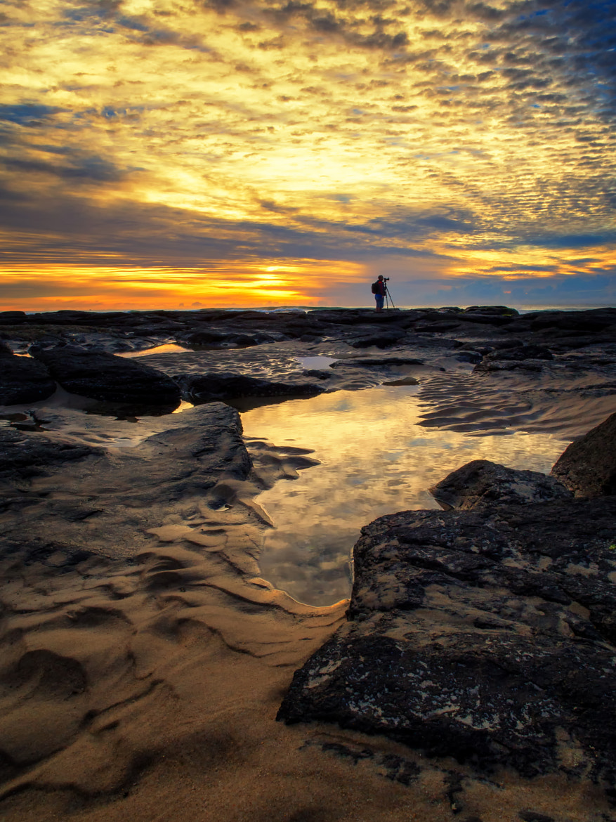 Photograph The Loner  by PaulEmmingsPhotography  on 500px