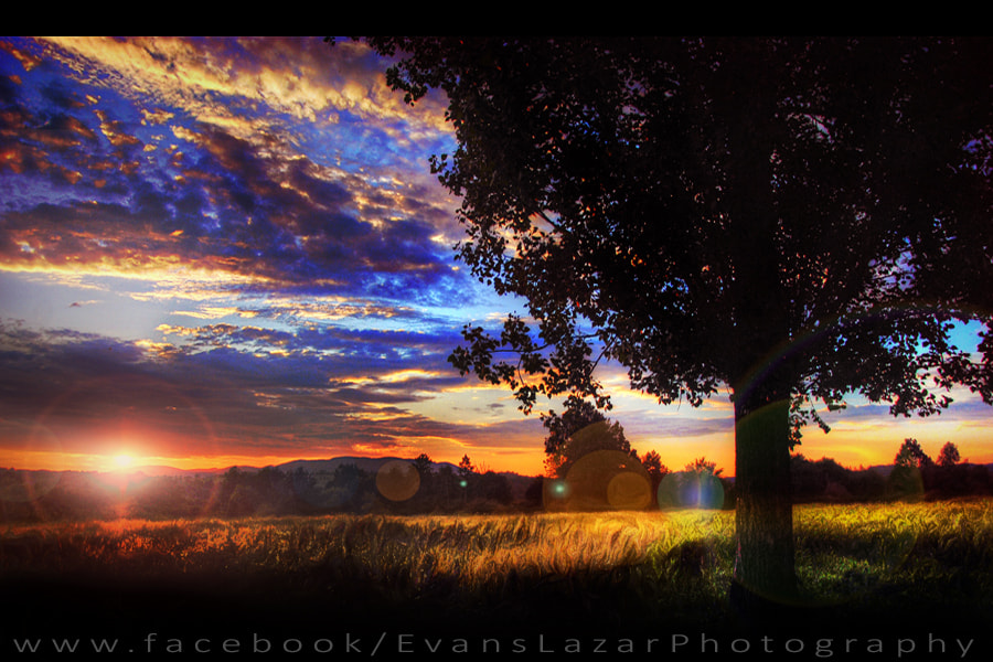 Photograph Sunset by Evans Lazar on 500px