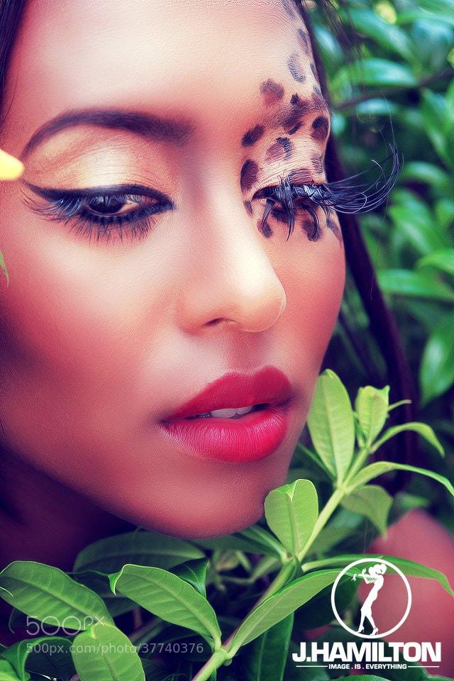 Photograph Beauty Leopard eyes by JHamilton TT on 500px