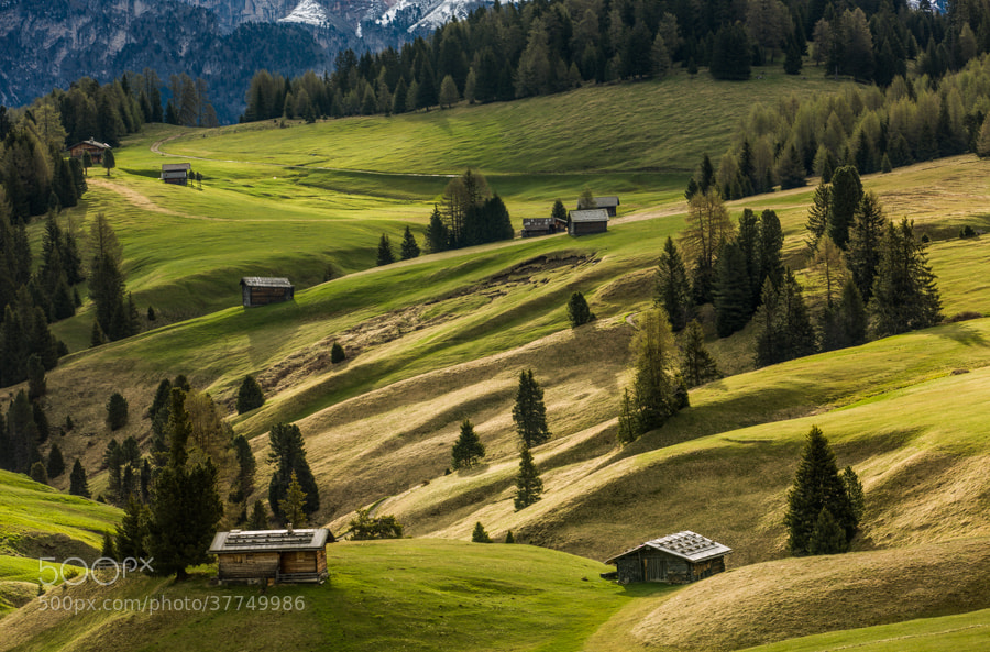 Photograph Alpe di Siusi landscape by Hans Kruse on 500px