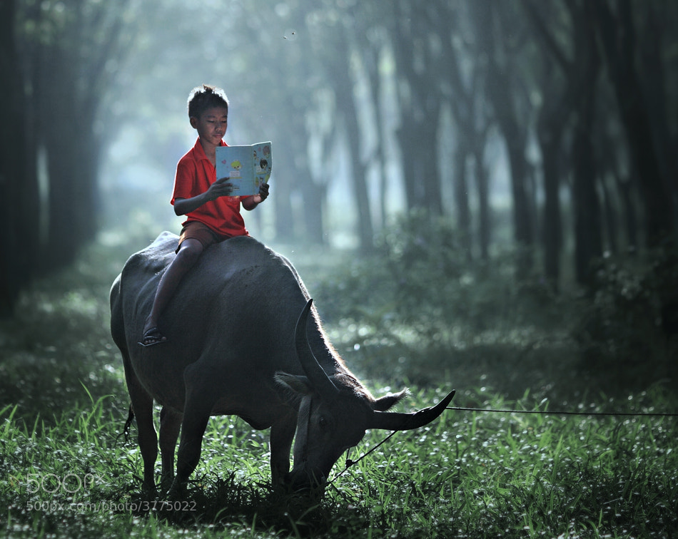 Photograph reading  by firdaus musthafa on 500px