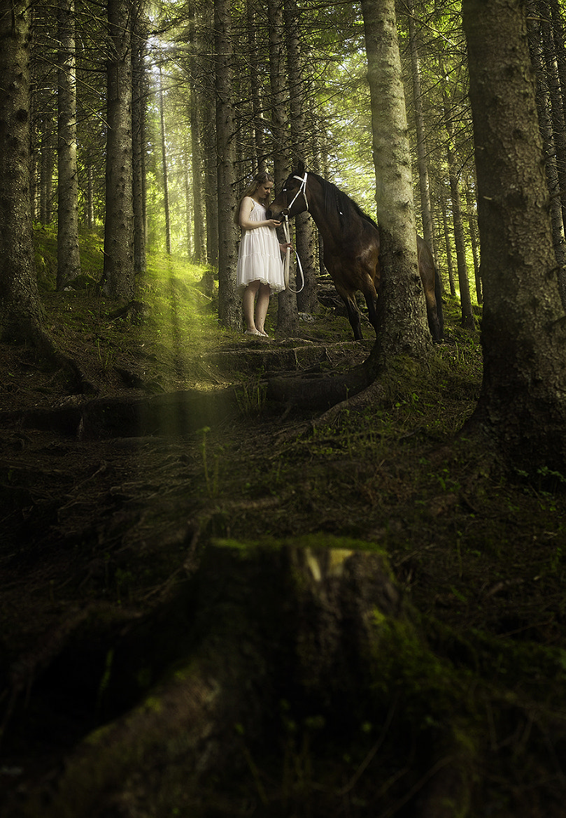 Photograph The love for nature and horses by Tommy  Angelsen on 500px