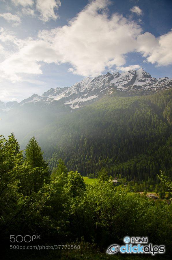 Photograph Le goût de la lumière (Valle dell'Orco, Parco Nazionale Gran Paradiso, Piemonte) by Francesco Sisti on 500px
