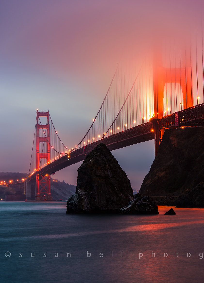 Photograph Foggy Hour by Susan Bell  on 500px