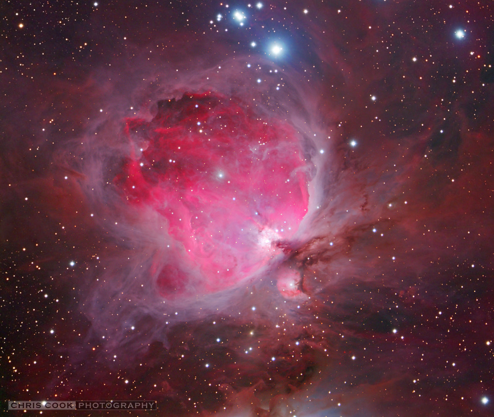Photograph The Orion Nebula by Chris Cook on 500px