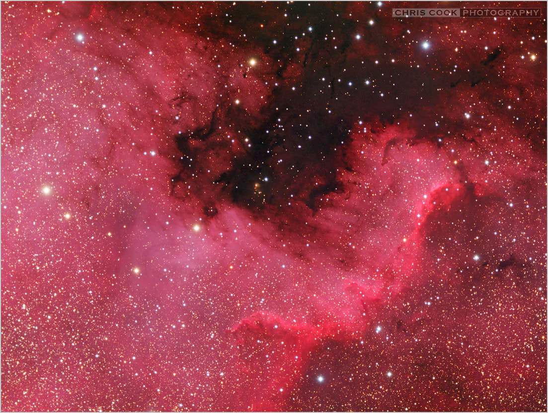 Photograph The North America Nebula by Chris Cook on 500px