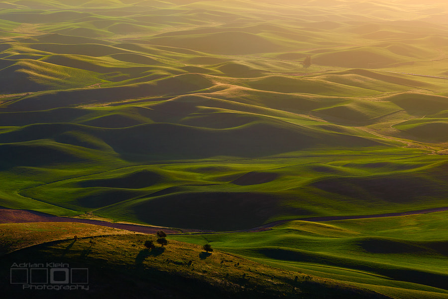 Photograph Tuscan Dreams by Adrian Klein on 500px
