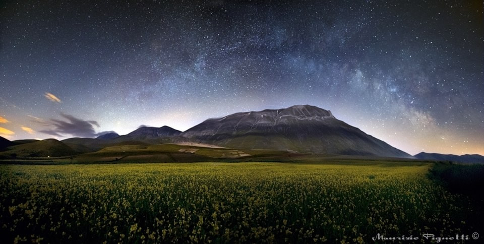 Photograph Milky Flowers II by Maurizio Pignotti on 500px