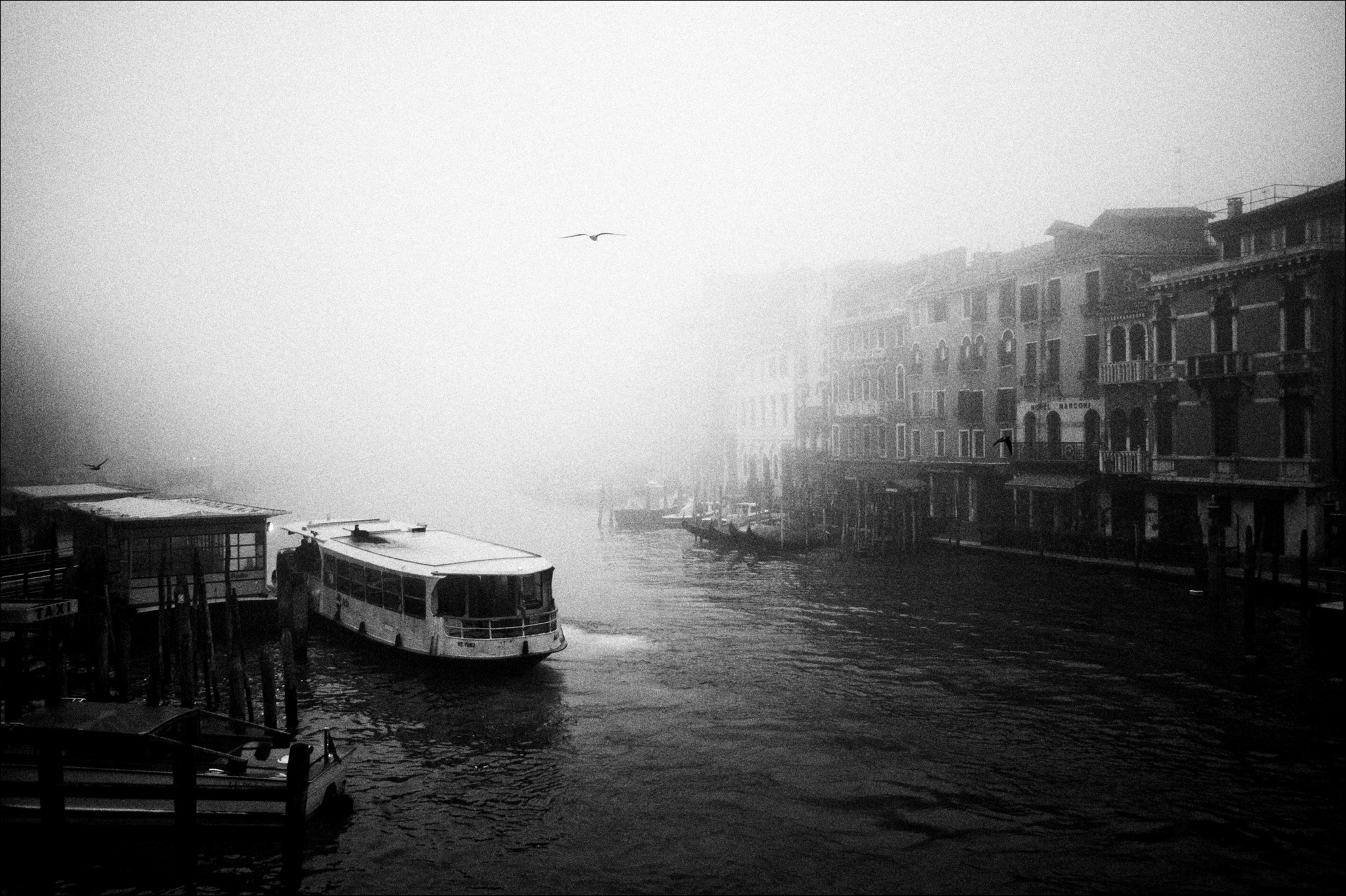 Photograph In Venice! by Tim Dornbusch on 500px