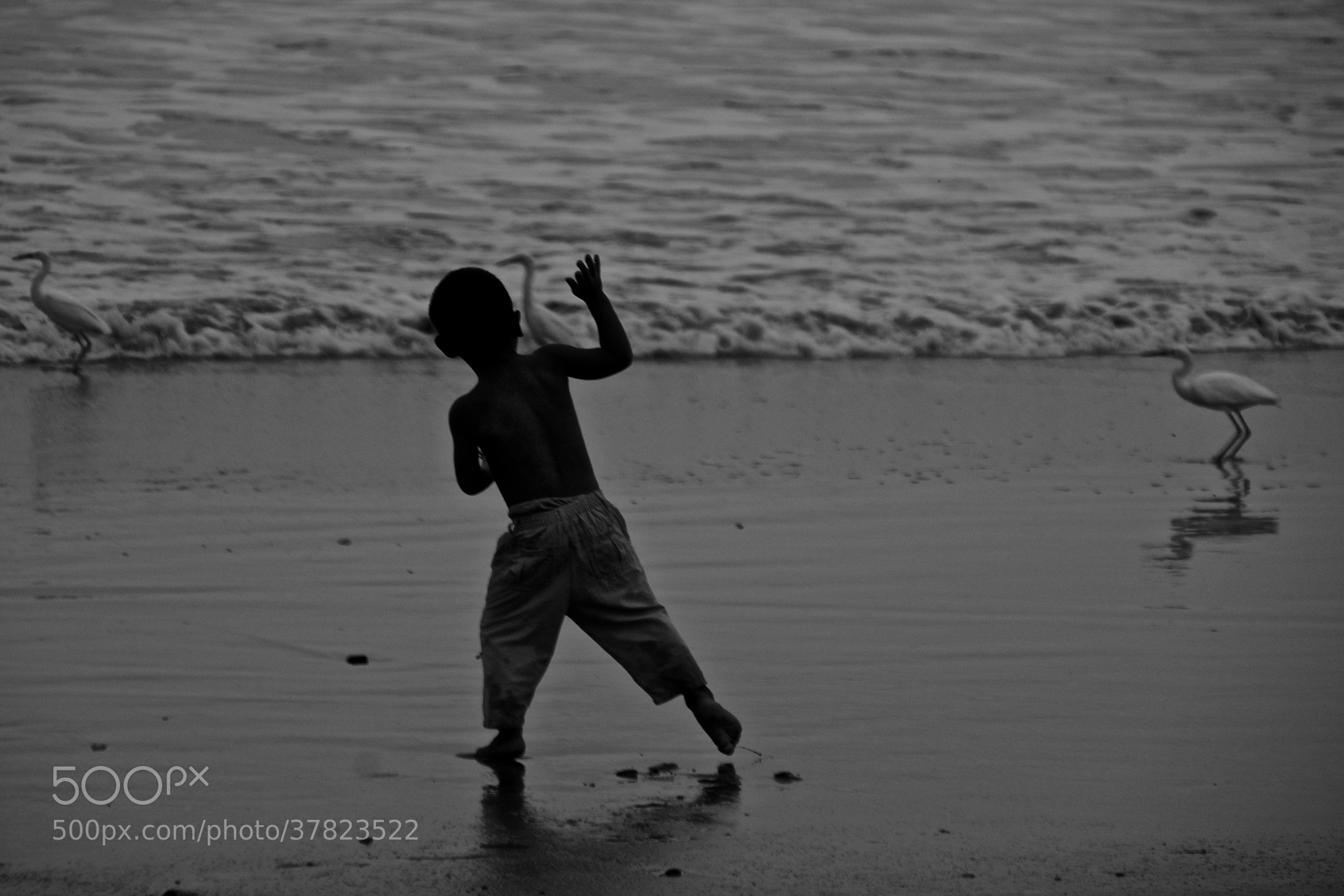 Photograph niño en la playa by Xavier Ortega on 500px