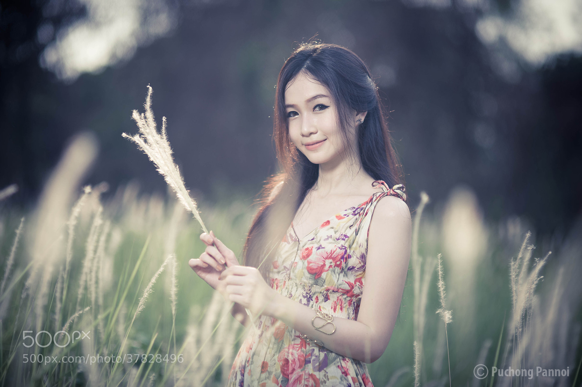 Photograph The secret garden. by Puchong Pannoi on 500px