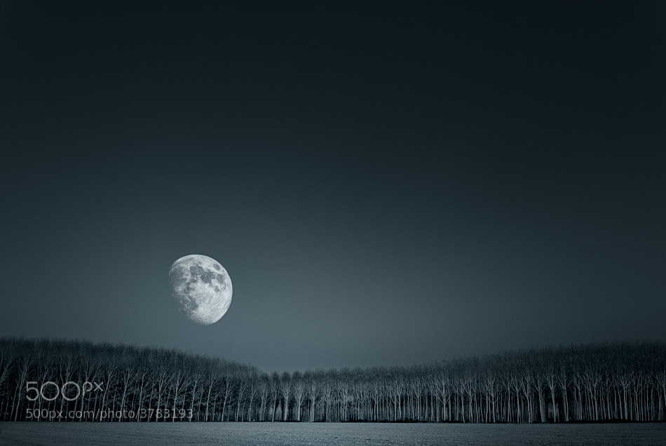 Photograph moonrise by Graziano Racchelli on 500px
